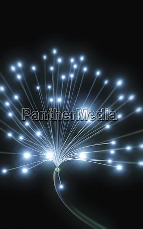 leuchtendes glasfaserkabel