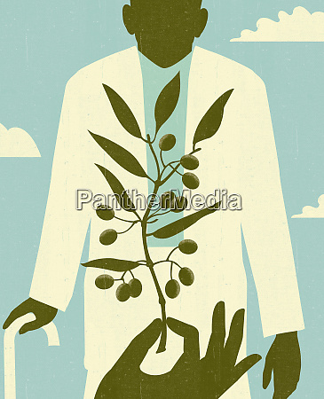 hand holding olive branch before elderly
