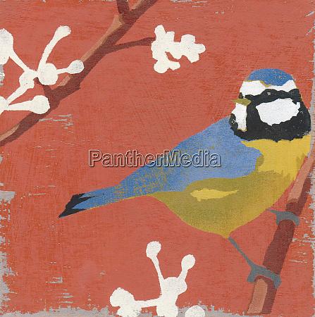 blue tit perching on budding branch