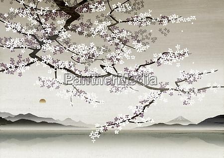 flower blossom in asian landscape