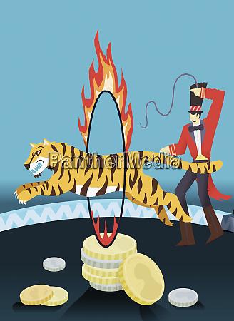man guiding tiger through flaming hoop