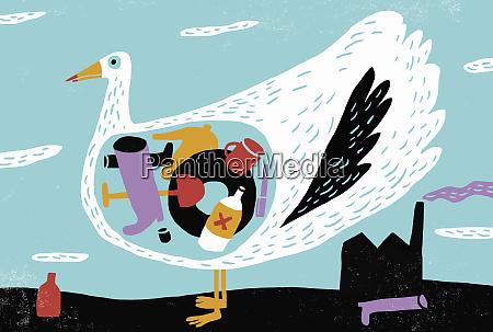 vogel mit magen voller plastikmuell