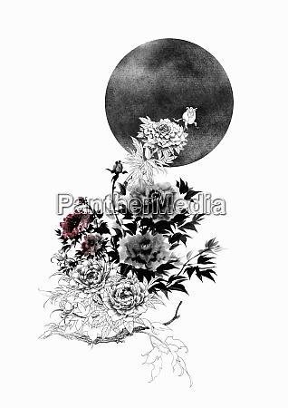 rose bush extending towards dark moon