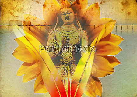 lotus flower behind image of buddha