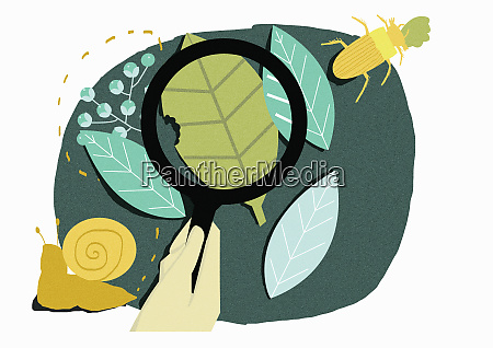 hand holding magnifying glass over leaves