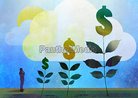 man watching dollar money trees grow