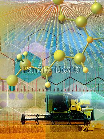 genetische forschung und agrarkolage