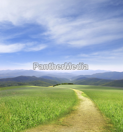 path through field leading to distant