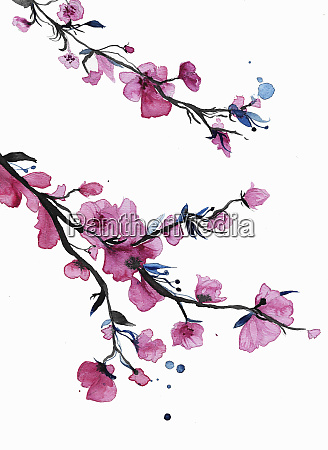 watercolor, painting, of, spring, blossom, on - 26013538