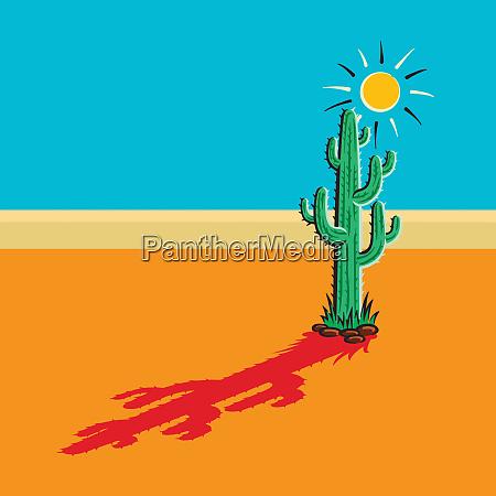 schatten des kaktus in der sonnigen