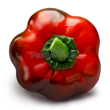 sweet bell pepper gogoshar paths