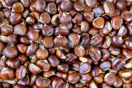 brown sweet chestnuts