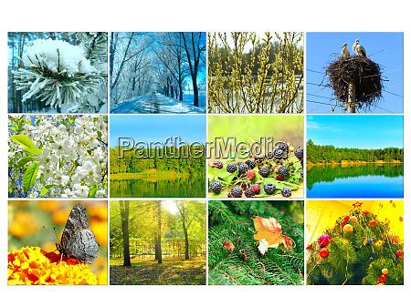 leer mit zwoelf farbigen naturbildern fuer