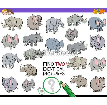 zwei identische tierbilder spiel finden