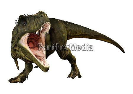 3d rendering tyrannosaurus rex auf weiss