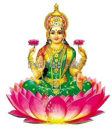 flower lotus hindu lord faith