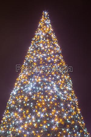 decorated illuminating christmas tree