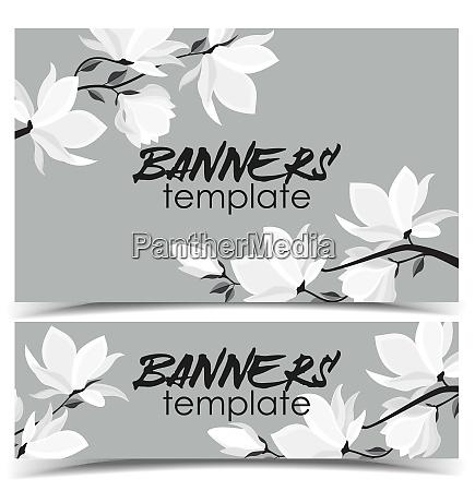 vector magnolia flowers