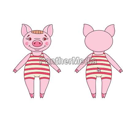 pig wearing a leotard in a