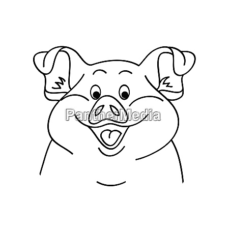 pig on a white background vector