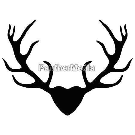 deer antlers silhouette isolated on white