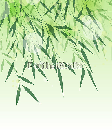 bambusgruen