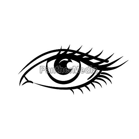 eye on white background woman eye