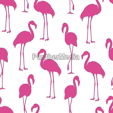 flamingo isolated exotic bird silhouette