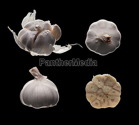 fresh garlic on black
