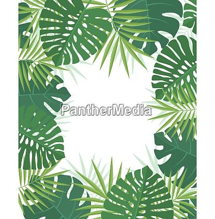palmgruene blaetter
