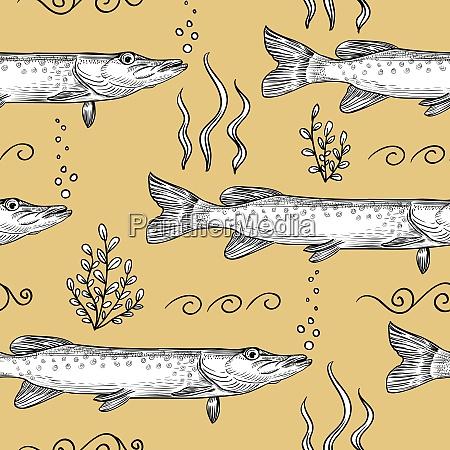 pike seamless pattern of pike