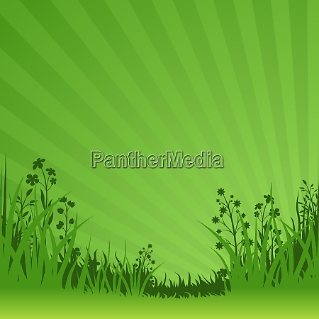 grüner, naturgrund - 26164754