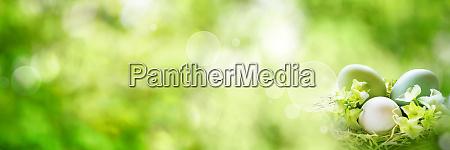 gruene fruehlingslandschaft mit ostereiern
