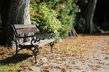 bench in a cemetery park in