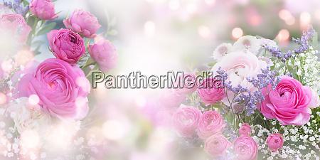 stillleben mit zarten rosen