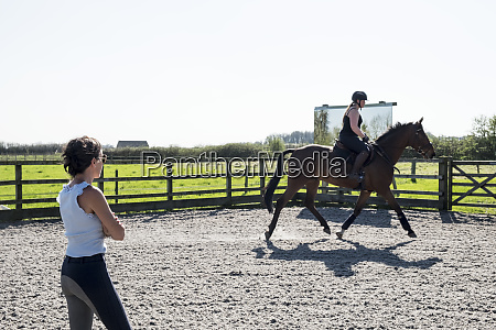 woman a horse trainer watching a