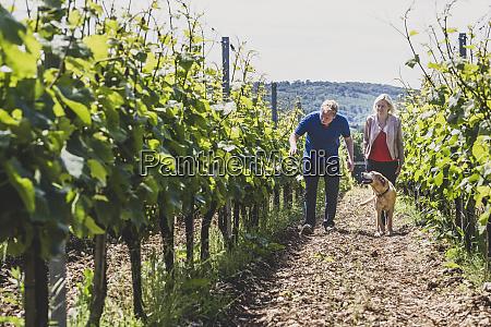 man woman and dog walking along