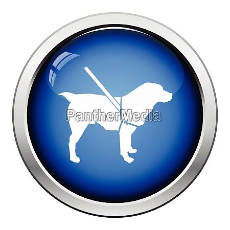 gude dog icon glossy button design