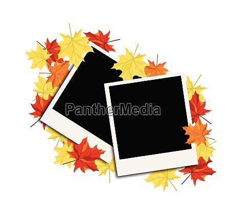 autumn frame with blank photograph