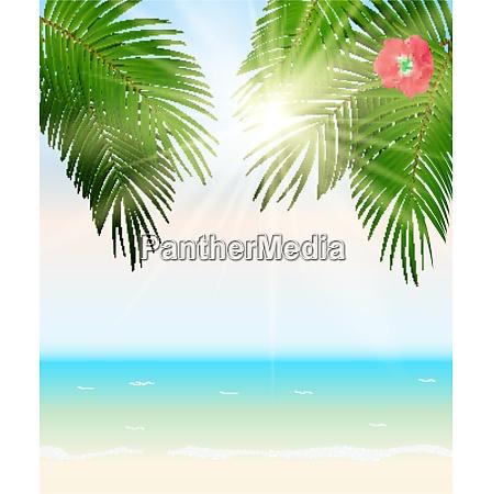 sommerzeit palm leaf seaside vektor hintergrund