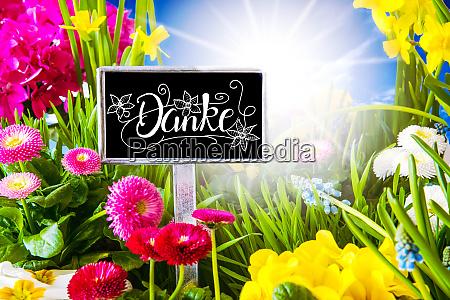 sunny spring flower calligraphy danke means
