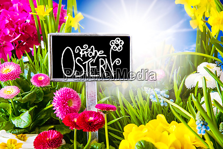 sunny spring flower calligraphy frohe ostern