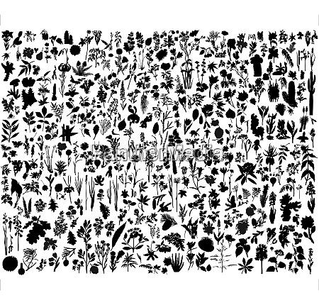 grosse sammlung von verschiedenen pflanzen silhouette