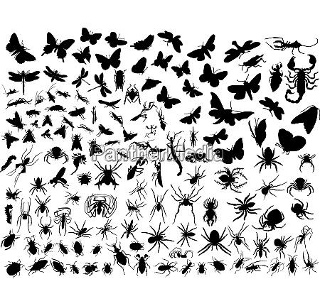 grosse sammlung verschiedener vektorinsechild silhouetten