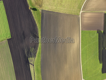 aerial view green and brown agricultural