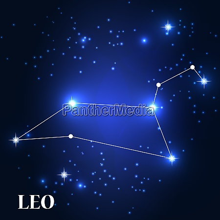 symbol leo zodiac sign vector illustration