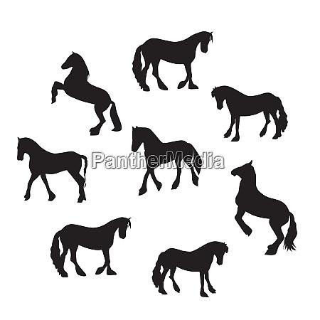 black horse silhouette set vector illustration