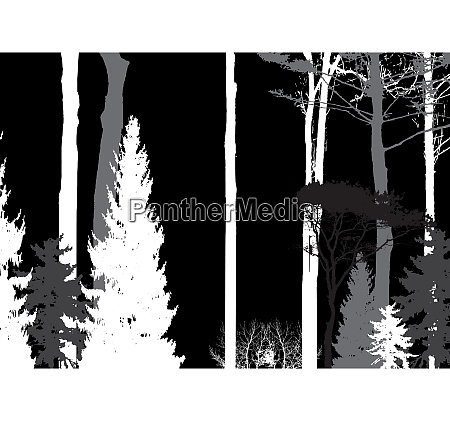 image of nature tree silhouette eco
