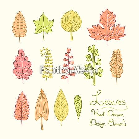 vector set of leaves in cartoon
