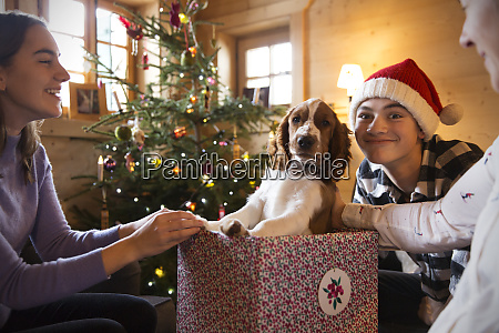 portraet familie spielen mit hund in